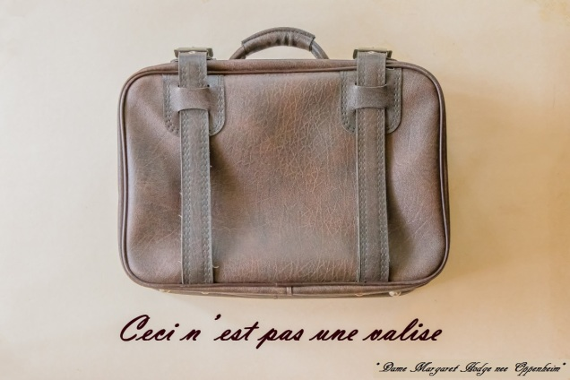 180823 hodge valise